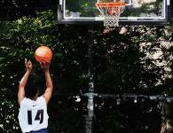 lycee sport etude basketball